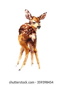 Watercolor Baby Deer Hand Painted Fawn Illustration isolated on white background