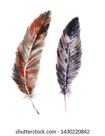 Watercolor background with colorful bird feathers