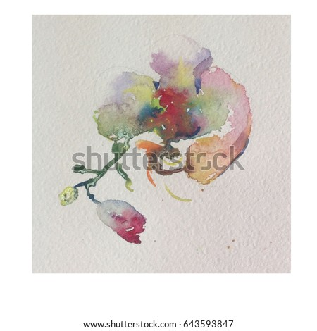 Watercolor Background Floral Single Flower