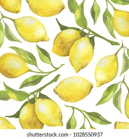 Watercolor background with fresh lemons tree branches and green leaves. Real watercolor painting
