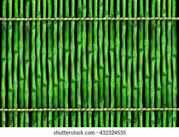 Watercolor background with green bamboo trees, trunks, sticks, ropes. Fence. Hand painting on paper