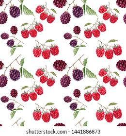 Watercolor background image Blackberries and raspberries