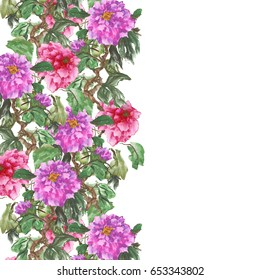 Watercolor background with peony. Purple and pink flowers on a white. Stylized Chinese painting illustration