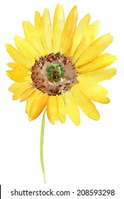 Watercolor background -Sunflower-