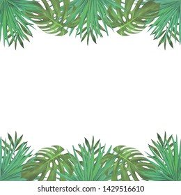 Watercolor banner with fresh green tropical leaves, isolated on white background. Summer exotic foliage and greenery for cards, invitations, congratulations. Palm and monstera leaves.