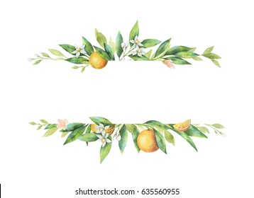Watercolor banner fruit orange branch isolated on white background. Illustration for design wedding invitations, greeting cards, postcards. Spring or summer flowers with space for your text.