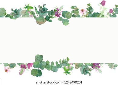 Watercolor banner with silver leaves and branches of eucalyptus dollar, green fresh bouquet of medicinal eucalyptus with medicinal plants, red clover, willow-herb, Echinacea, Melissa and mint.