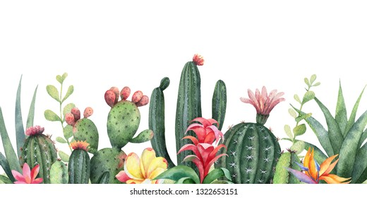 Watercolor banner tropical flowers and cacti isolated on white background. Illustration for design wedding invitations, greeting cards, postcards.