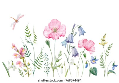 Watercolor banner with wild flowers, pink poppy, snowdrop, violet and purple bells. flying dragonfly, Botanical invitation greeting card