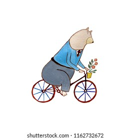 Watercolor bear on a bicycle on a white background