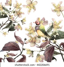 Watercolor beautiful blooming branch of jasmine flowers and bird garland. Hand painted illustration.