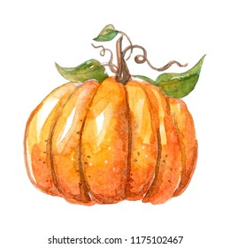 Watercolor beautiful pumpkin on white background. Autumn illustration. Happy Hallowen!