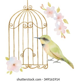 Watercolor bird, cage and flowers. For your spring design of invitation and greeting cards.