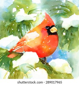 Watercolor Bird Cardinal Winter Christmas Hand Painted Greeting Card Illustration