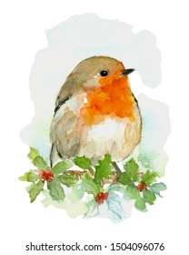 Watercolor bird Robin hand drawn painting illustration art decor isolated on white background for card, print, wall art or your design