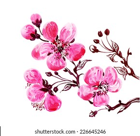 Watercolor blooming twig