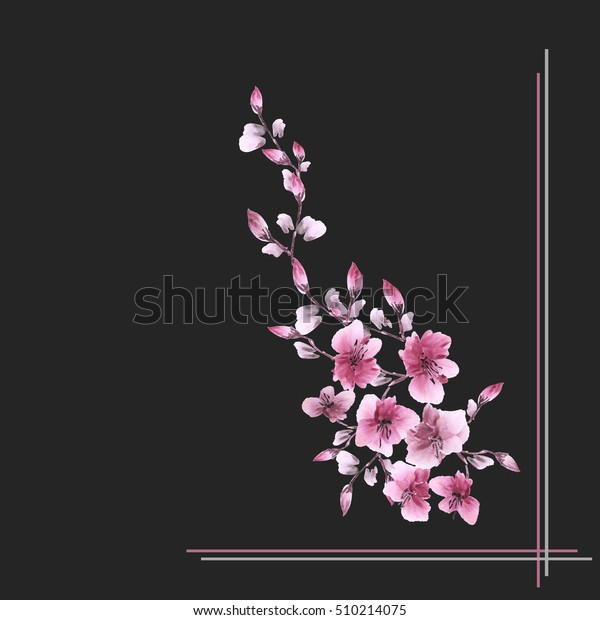 Watercolor blossoming spring branch with pink flowers on the black background -1