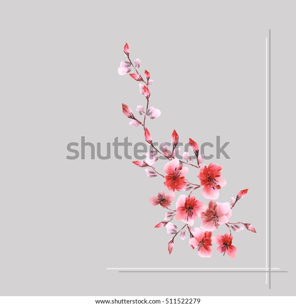 Watercolor blossoming spring branch with red flowers on the gray background