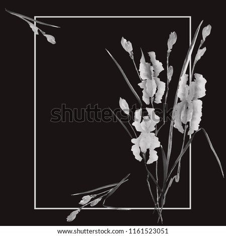 Watercolor blossoming wild gray flowers on the black background. Floral decoration. Birthday card.