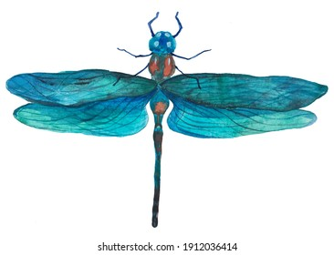 Watercolor blue dragonfly for different kind of design. For postcard, website and others.