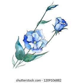 Watercolor blue eustoma flower. Floral botanical flower. Isolated illustration element. Aquarelle wildflower for background, texture, wrapper pattern, frame or border.