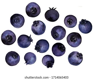 Watercolor Blueberry. Fresh raw berries isolated on white background. With clipping path. Collection.