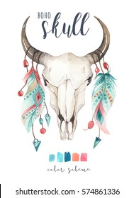 Watercolor bohemian cow skull and feather.  Western mammals. hipster deer boho decoration print antlers. flowers, feathers. Isolated on white background. Boho style.  Hand drawn ethnic themed design.