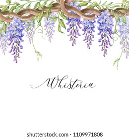 Watercolor border with violet wisteria.