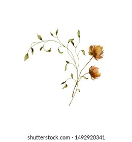 Watercolor botanical floral illustration. Painted autumn composition of flowers and herbs. Beautiful bouquet. Element for design