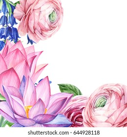 Watercolor botanical illustration isolated.  Ranunculus, Lotus, bell, It can be used for birthday card, invitation, wedding card, poster, mothers day card.