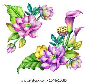 watercolor botanical illustration, lotus floral design elements, corner, tropical flowers arrangement, oriental garden nature, green leaves, lotos natural clip art isolated on white background