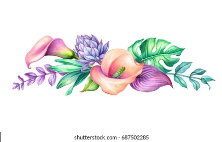watercolor botanical illustration, wild tropical flowers, jungle green leaves, calla lily, floral border, isolated on white background