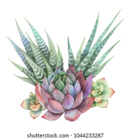 Watercolor bouquet of cacti and succulent plants isolated on white background. Flower illustration for your projects, greeting cards and invitations.