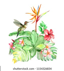 Watercolor bouquet with colibri, palm leaves, plumeria and strelitzia flowers isolated on white.