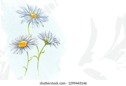 Watercolor bouquet of flowers. Vintage style chamomile and cornflower on a color spot. Colorful floral composition isolated on white background.