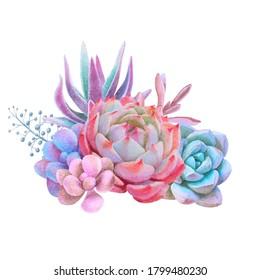 Watercolor bouquet whith pink echeveria, decorative illustration, hand drawn floral clip art