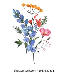 Watercolor bouquet with wildflowers, herbs, leaves, isolated on white background