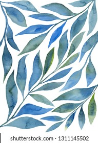 watercolor branches of a plant