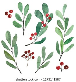 Watercolor branches set. Hand drown Christmas greenery on white background. Plants illustration. Perfect for template, greeting cards, graphic, poster, stickers ets