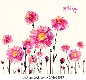 Watercolor bright asters-4