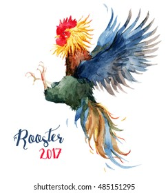 watercolor bright rooster, cock fights, symbol of 2017, isolated object on a white background
