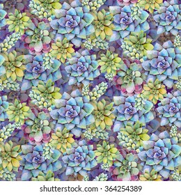 Watercolor bright seamless pattern with succulent plants. Hand drawn raster illustration
