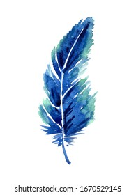 Watercolor bright tropical feather isolated on a white background