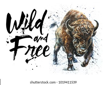 watercolor buffalo bison animal wild wildlife bull