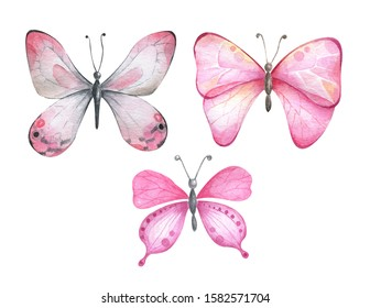 Watercolor butterflies in pink colors.