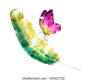 Watercolor Butterfly With Feather On White