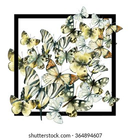 Watercolor butterfly frame. Hand painted butterflies in black frame on white background