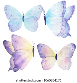 Watercolor butterfly set hand drawn painting. Can be used for greeting cards,wedding invitations,logo,T-shirts,bags,posters,printing on fabric,wallpaper,packaging,decorations.