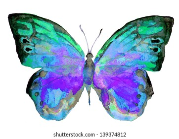 watercolor butterfly,summer design,isolated on a white