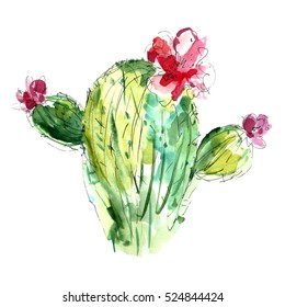 Watercolor cactus with flowers.